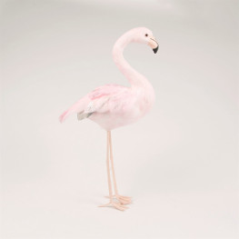 Grosser Flamingo